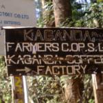 kaganda1